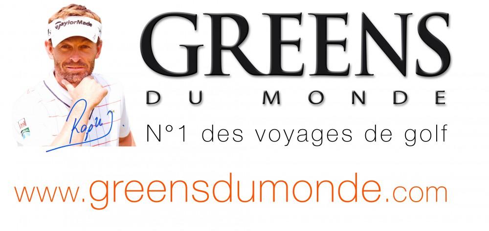 LogoGDM20142015