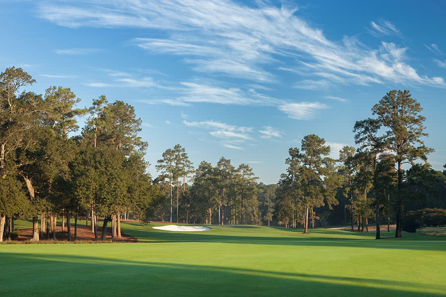 Bluejack-National-5