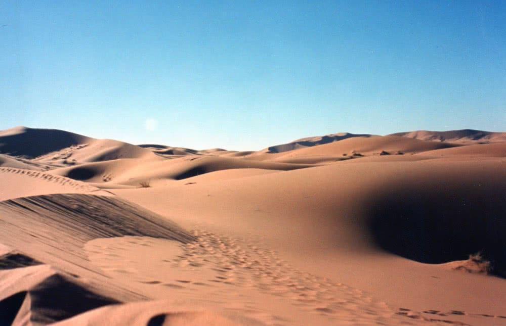 Desert Trophy 99 Maroc (3)