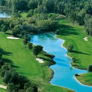 Les Sangliers du Golf Club de Lyon
