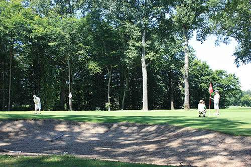 golf-de-la-bosse-green