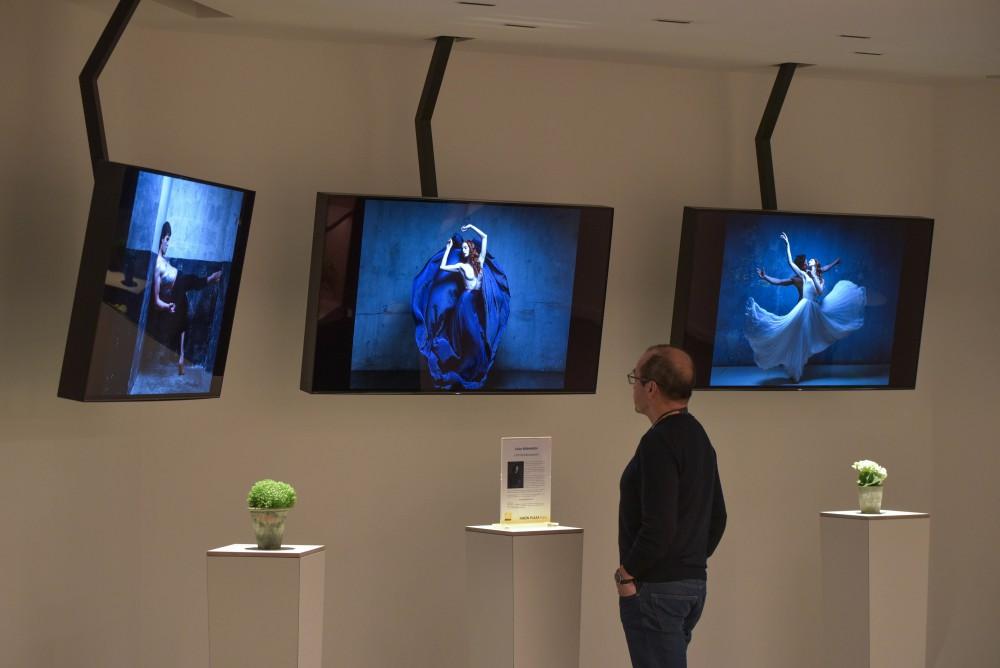Les expositions mensuelles du Nikon Plaza