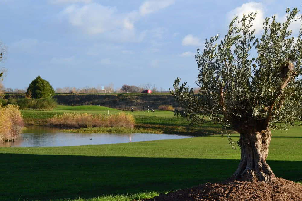 Le golf de la Carte